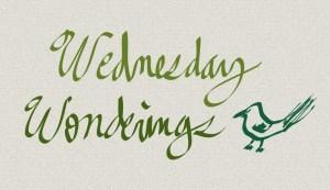 Wednesday Wonderings