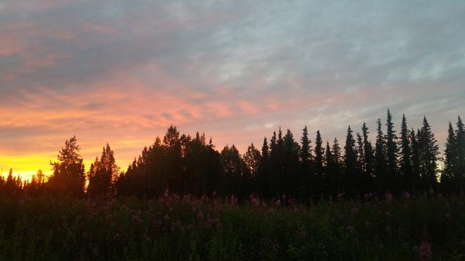 AK sunset